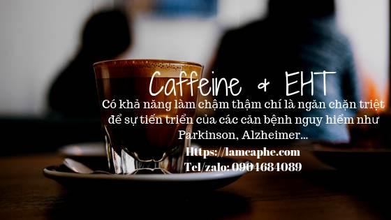 cafe-giup-ngan-ngua-cac-chung-benh-nguy-hiem-ve-nao-1_2