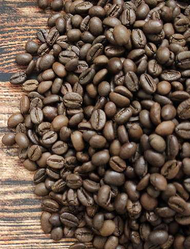 robusta-coffee-1_7