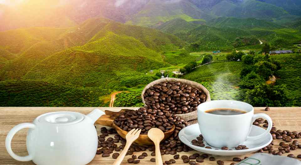 Làm cà phê
