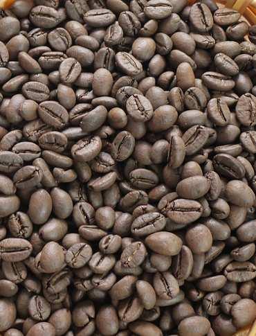 cafe-hat-robusta-0904684089_1_10