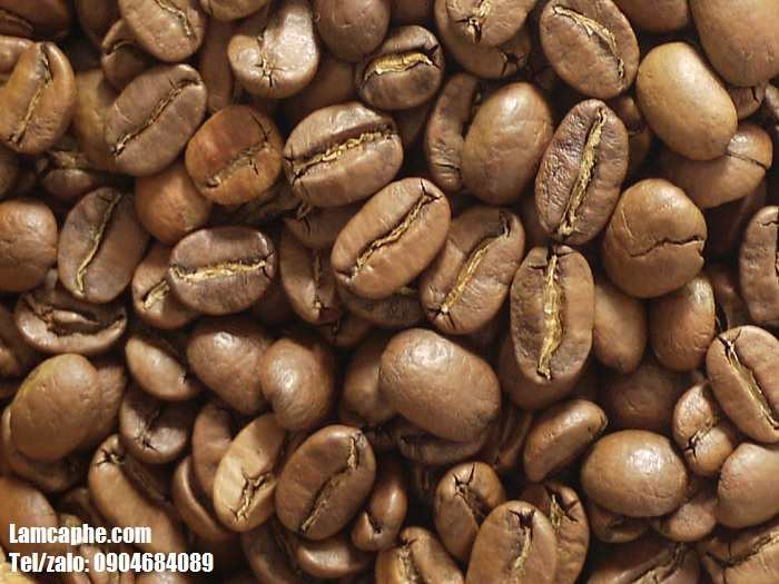 ca-phe-hat-nguyen-chat-arabica-0904684089-1_11
