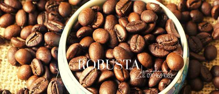 ca-phe-robusta-loai-1-0904684089-270421_100