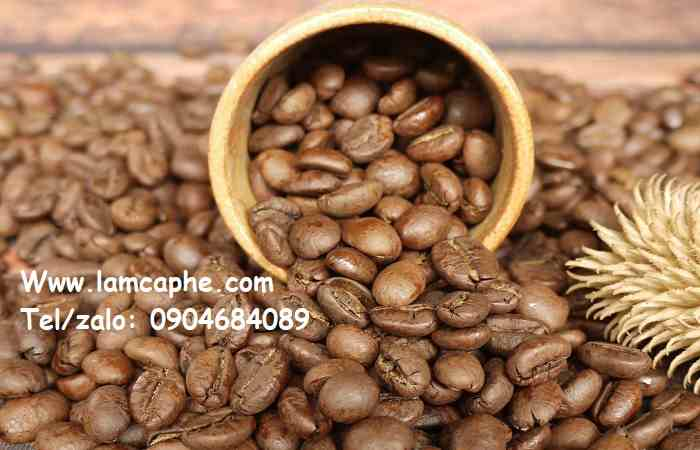cung-cap-ca-phe-hat-rang-xay-nguyen-chat-tai-quang-binh-0904684089-100320-01