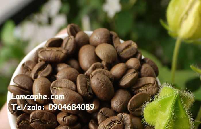 cung-cap-ca-phe-hat-rang-xay-nguyen-chat-tai-quang-ninh-0904684089-10032020-01_1