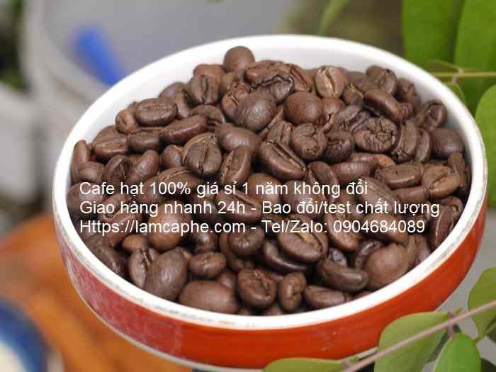 ca-phe-hat-robusta-0904684089-14072020-01_10