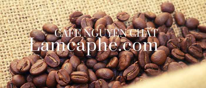 cafe-nguyen-chat-0904684089-190920-1_100