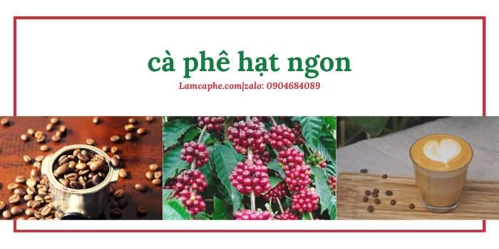 ca-phe-nguyen-chat-loai-nao-ngon-0904684089-130321-1_100-1