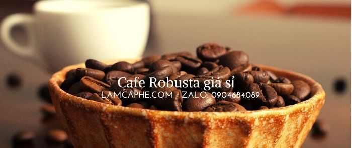 ca-phe-robusta-manh-me-nhu-the-nao-0904684089-190621_1_100