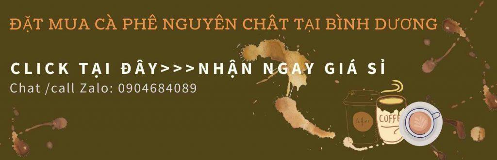 mua-ca-phe-nguyen-chat-binh-duong-0904684089-200621_1_100